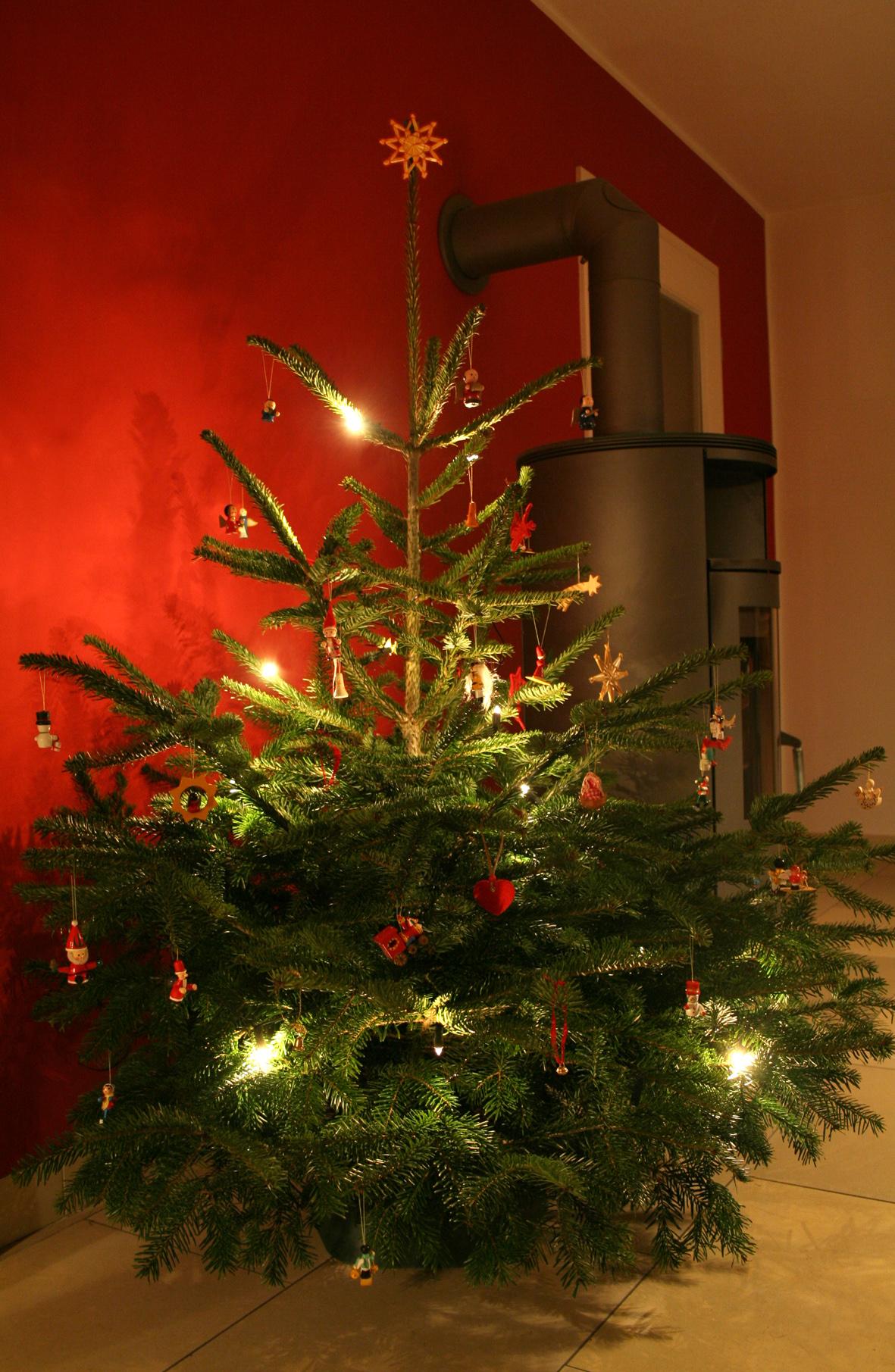 so bleiben weihnachtsb ume frisch landwirtschaftskammer nordrhein westfalen. Black Bedroom Furniture Sets. Home Design Ideas