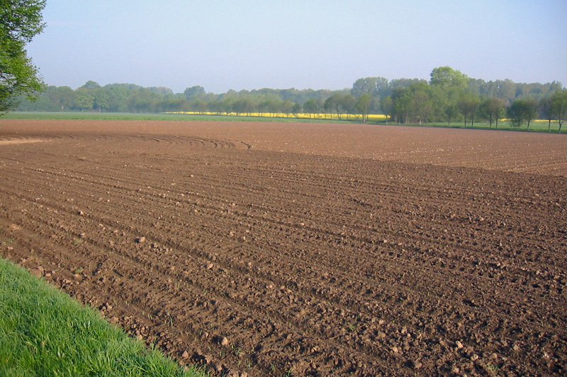 direktzahlungen - landwirtschaftskammer nordrhein-westfalen