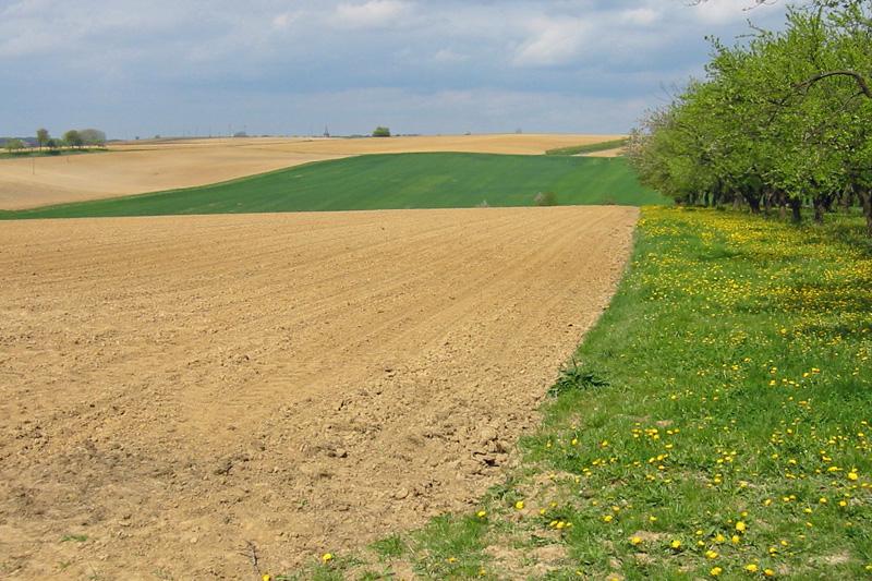 zahlungsansprüche - landwirtschaftskammer nordrhein-westfalen