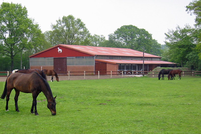 Häufig Beim Stallbau die Kosten im Auge behalten - Landwirtschaftskammer PW77