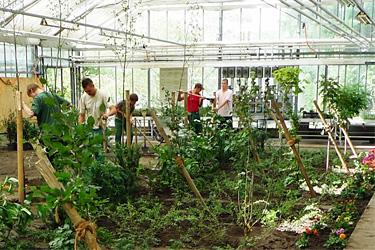 Lehrgangsinhalte Garten Und Landschaftsbau Gartenbauzentren Der