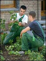 Ausbildung garten und landschaftsbau  Gärtner/in Fachrichtung Garten- und Landschaftsbau ...